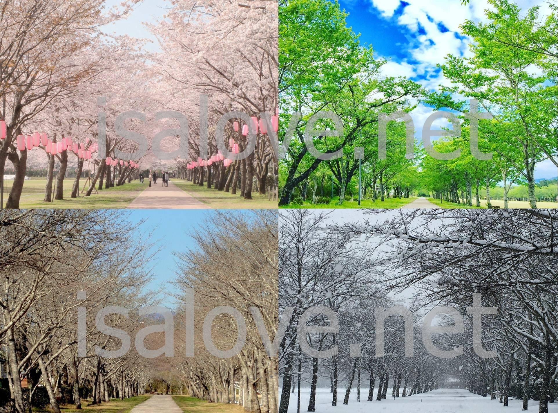 伊佐LOVE